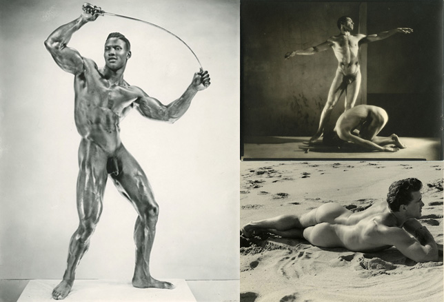 The Physique Project